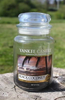 bougie cocooning black coconut de yankee candle