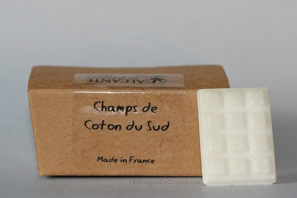 Champs de coton du sud  – Alcante