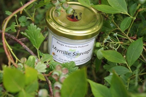 myrtilles-sauvage-bougiecrea-1