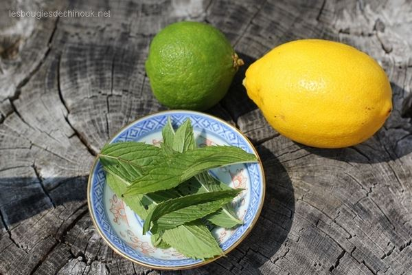 the-glace-citron-menthe-2