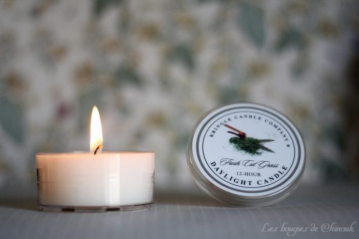 Fresh Cut Grass de Kringle Candle