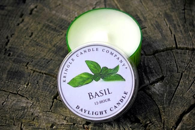 Basilic bougie kingle candle