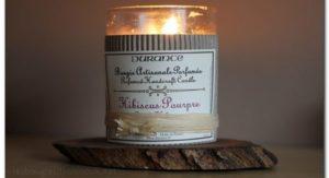 Hibiscus Pourpre de Durance